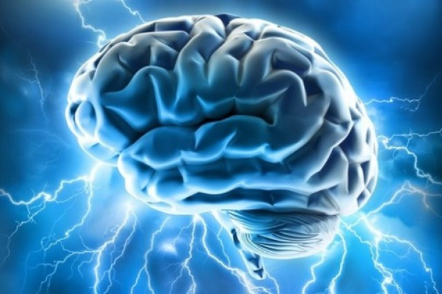 Study Reveals Fascinating Possibilities for Video Gaming and Brain Development and Repair