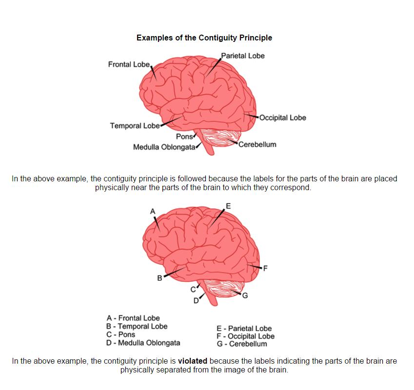 Contiguity-Principle